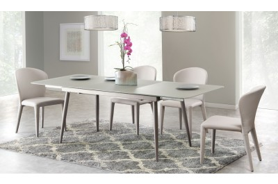 Modern Glass dining table with extension w/4 side chairs