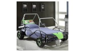 Twin Car Bed-WS