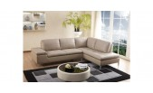 Gardenia - Modern Sectional sofa with Chaise - GE