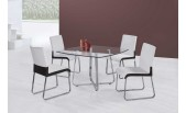 Glass top Dining Table Set - B 21